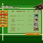 Design web pentru Pet shop