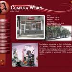 Design web pentru www.wisky.ro